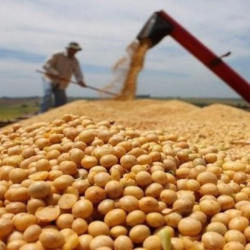 Fiscalización sobre el comercio de granos